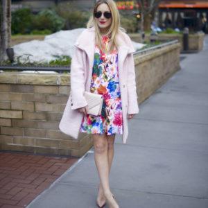 Cynthia Steffe Floral Drop Waist Dress